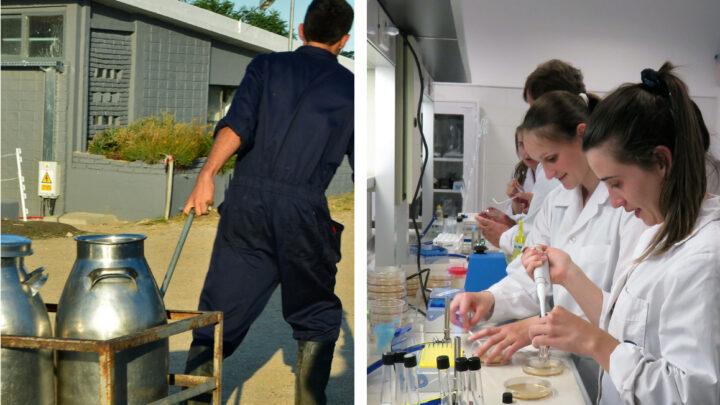 Con dos carreras para el sector lácteo, UTEC se afianza en Colonia